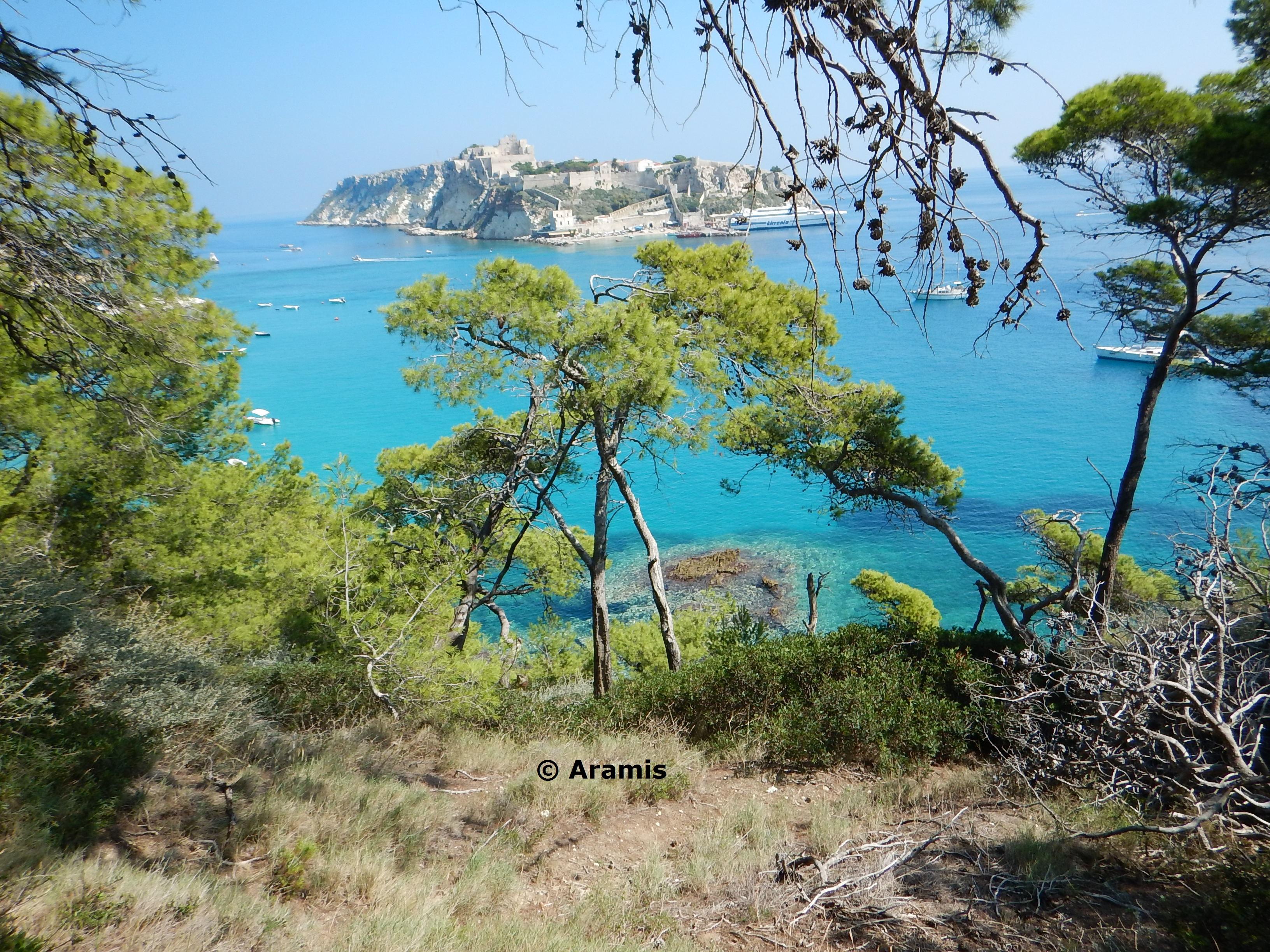 Panorama_Tremiti