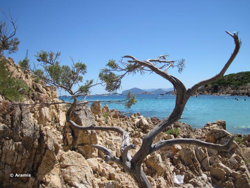 Spiagge della Costa Smeralda