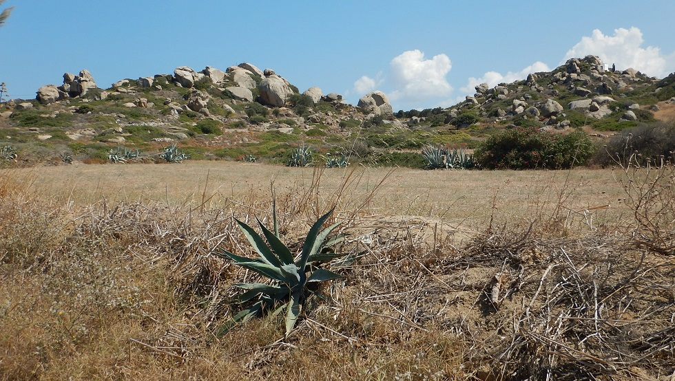 top five isola di Naxos