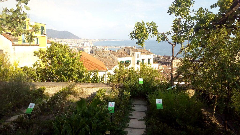Giardino della Minerva