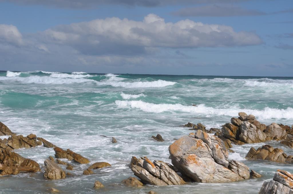incontro degli oceani a cape l'agulhas 4