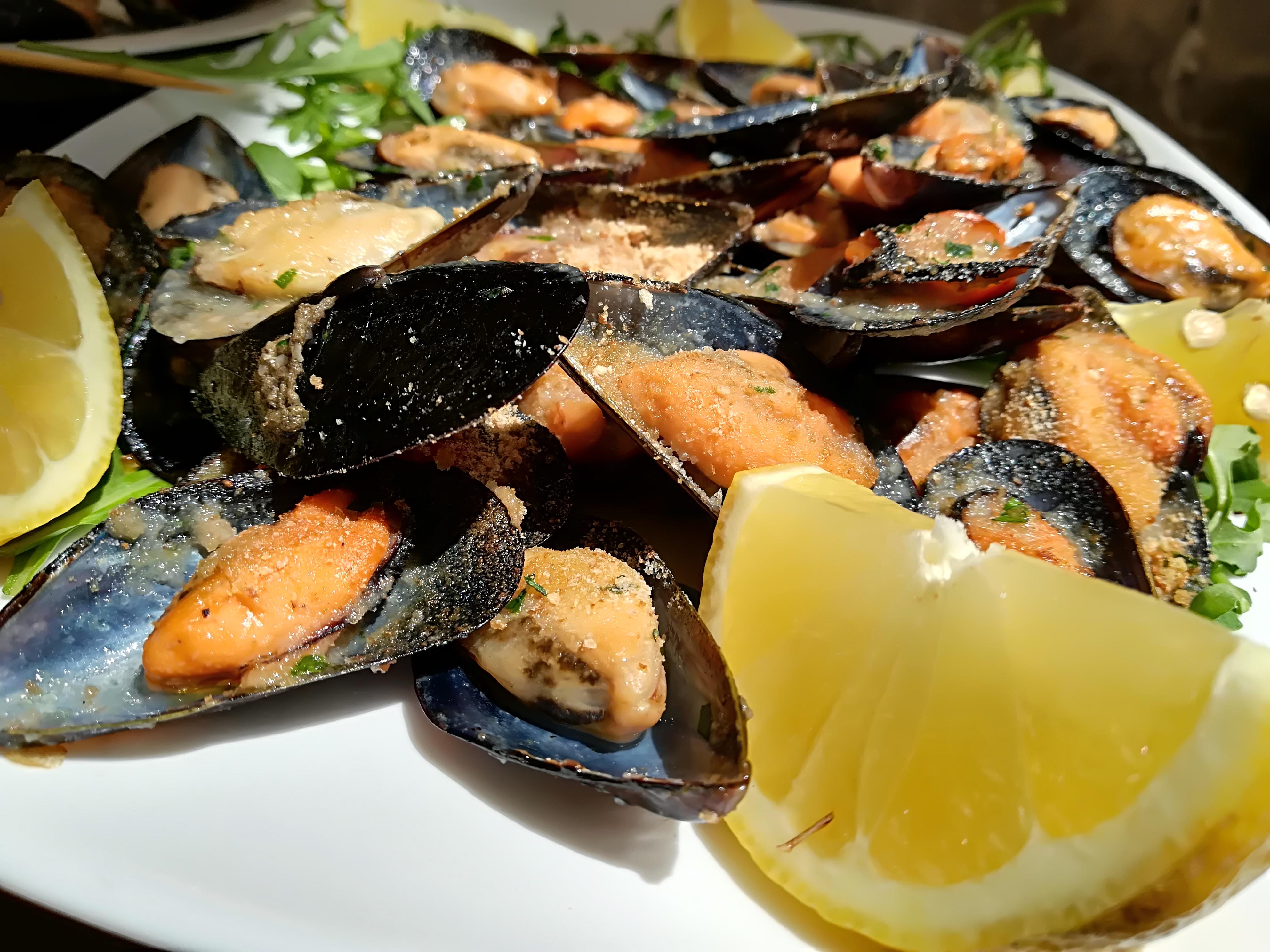 piatti tipici Puglia 3
