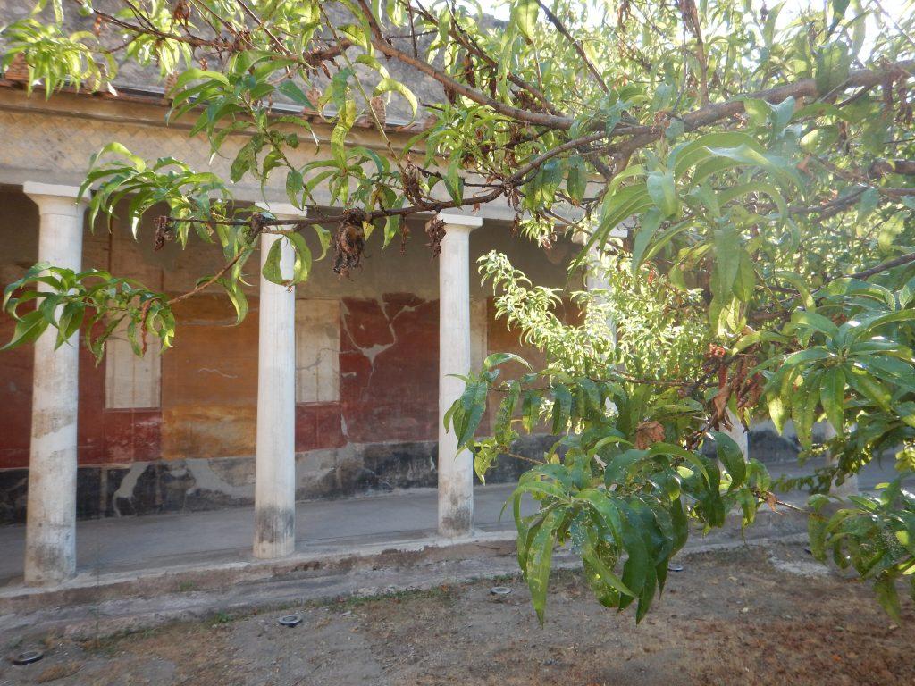 Giardini villa di Poppea a Oplontis